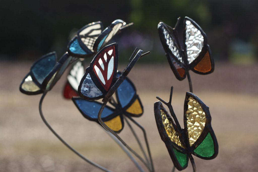 Papillons _